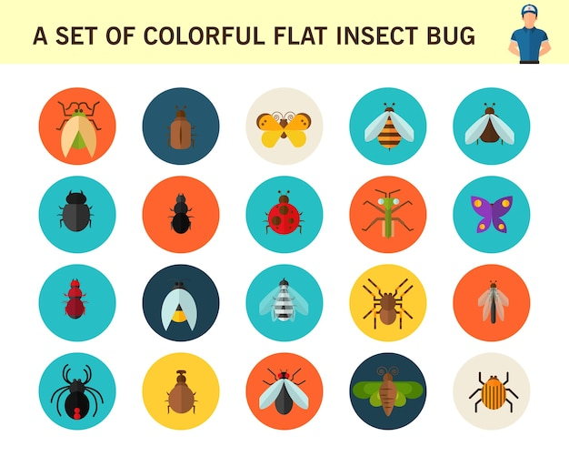 A set of colorful flat insect bug concept flat icons.