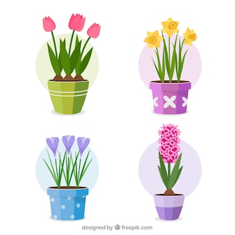 Set of colorful flowers in flat style