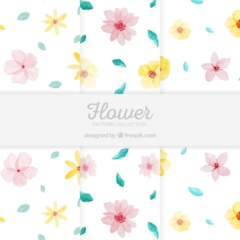 Set of colorful flowers patterns