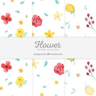 Insieme di modelli di fiori colorati