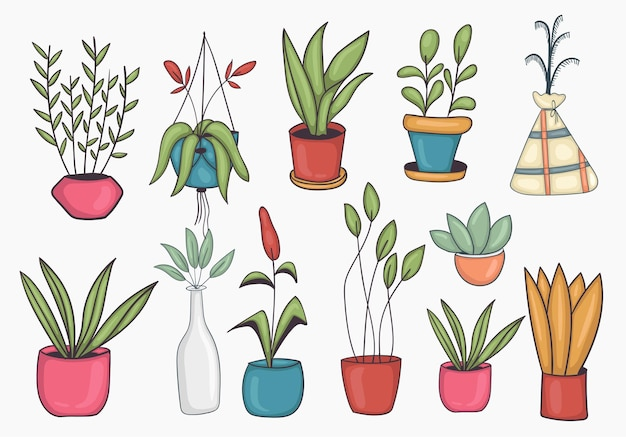 Set of colorful hand drawn potted plant illustration
