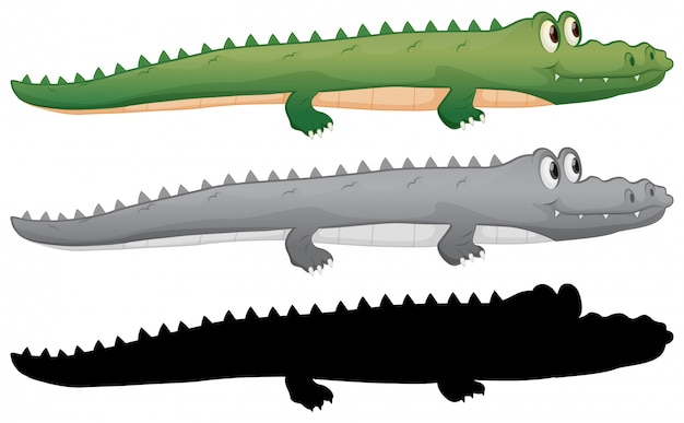 Set of crocodile character
