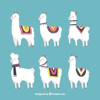 Set of cute alpacas
