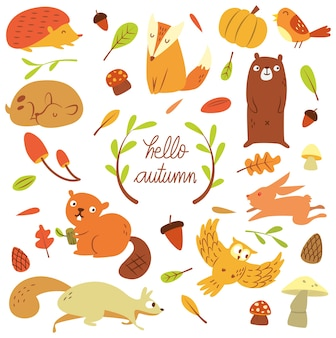 Set of cute autumn animal isolated on white background