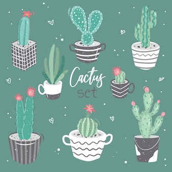 Set of cute cacti, a collection of cacti with flowers. decorative natural elements in cartoon style
