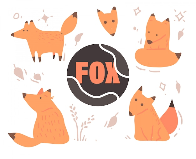 Set of cute cartoon foxes