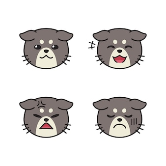 Set of cute cat faces showing different emotions