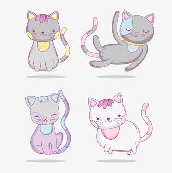 Set cute cats pet animals