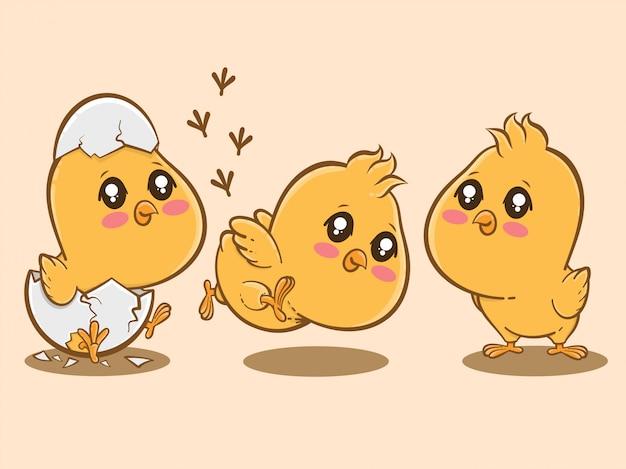 Set of cute chicks cartoon