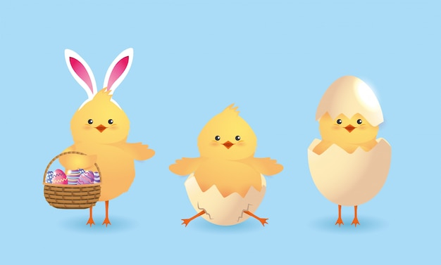 Set cute chicks with eggs broken and easter decoration