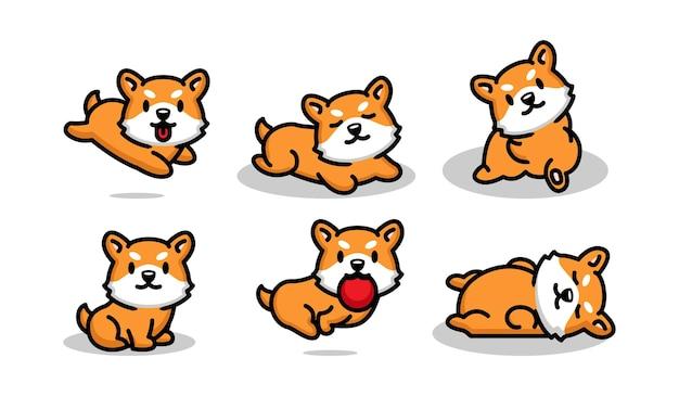 Set of cute corgi dog illustration