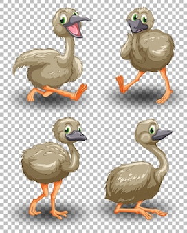 Set of cute goose on transparent