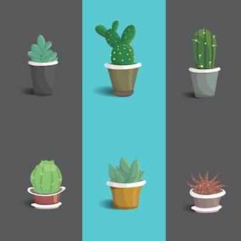 Set of cute house cactus  illustration