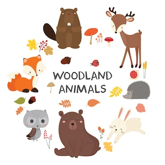 Set of cute illustration of woodland animals.