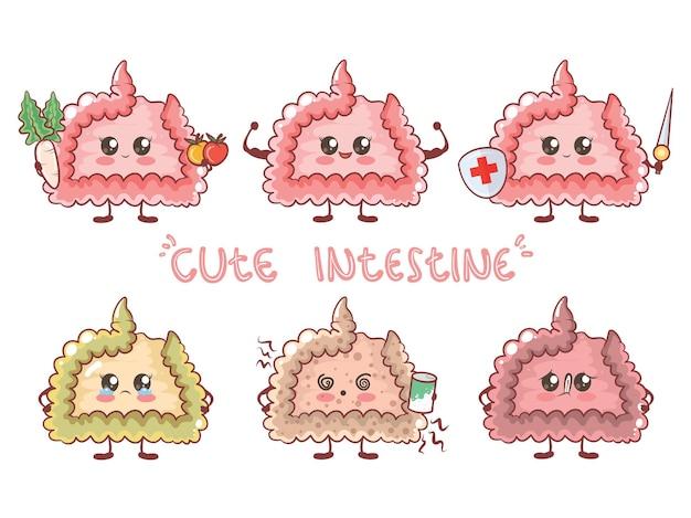 Set of cute intestine healthy and unhealthy human organ. cartoon