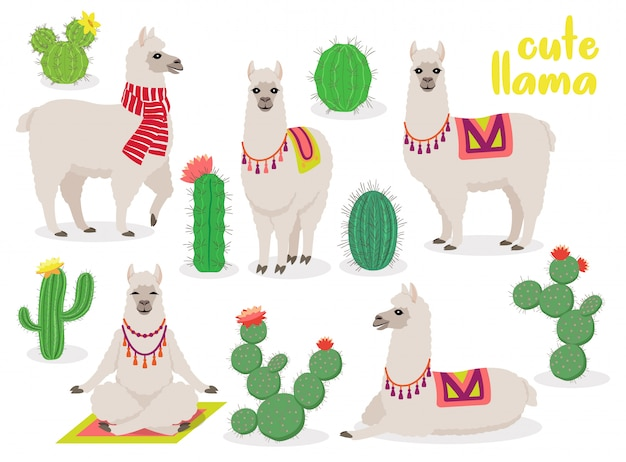 Set of cute llamas in different poses