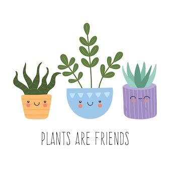 Set of cute mexican succulents illustration