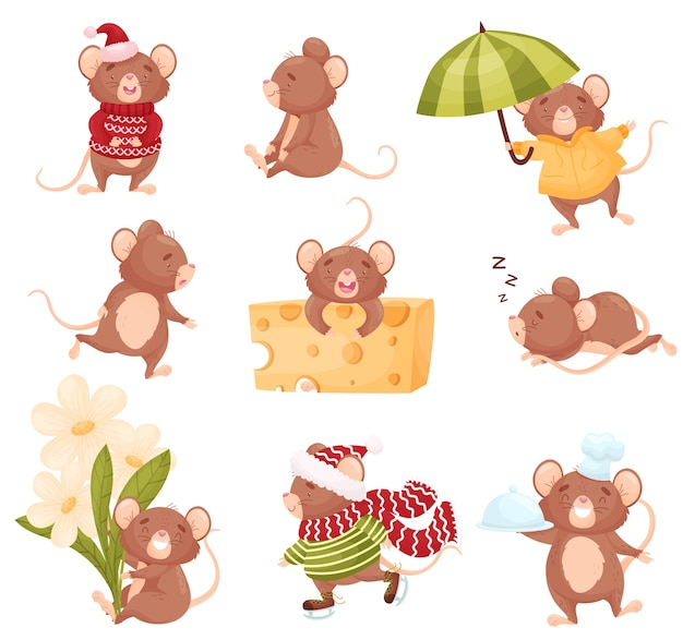 Set of cute mice in different situations