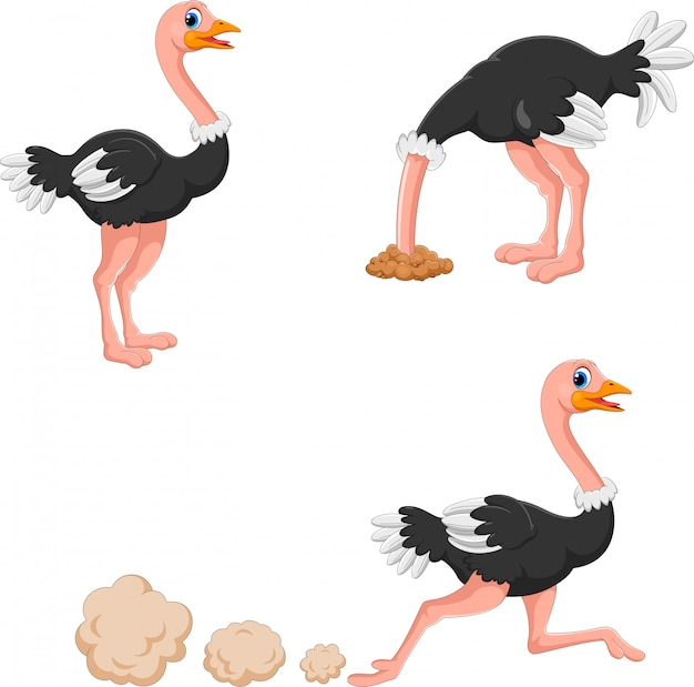 Set of cute ostrich cartoon