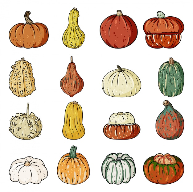 Set of cute outline pumpkin doodles