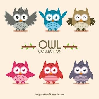 Set of cute owls in flat design