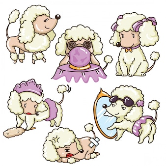 Set cute poodle dog cartoon. animal ans pet concept.