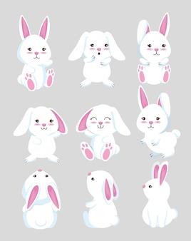 Set cute rabbit wild animal