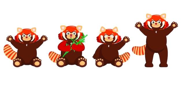 Set of cute red panda with bamboo little panda ailurus fulgens on white background