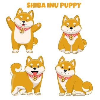 Set of cute shiba inu puppy dog