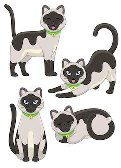 Set of cute siamese cat