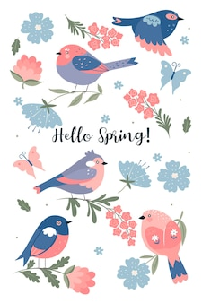 Set of cute spring birds isolated