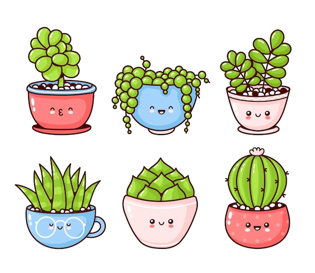 Set of cute succulents plants isolated on white
