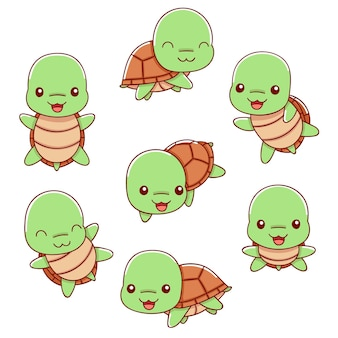Set of cute turtle in various poses, vector illustration, cartoon style