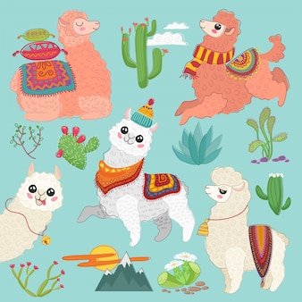 Set of  cute vector alpaca lama and desert cactus elements.