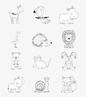 Set cute wild animals character