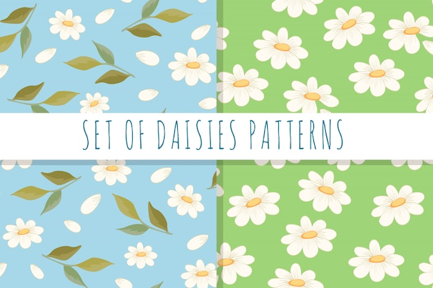 Set of daisies patterns