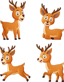 Set of deer cartoon character isolated on white