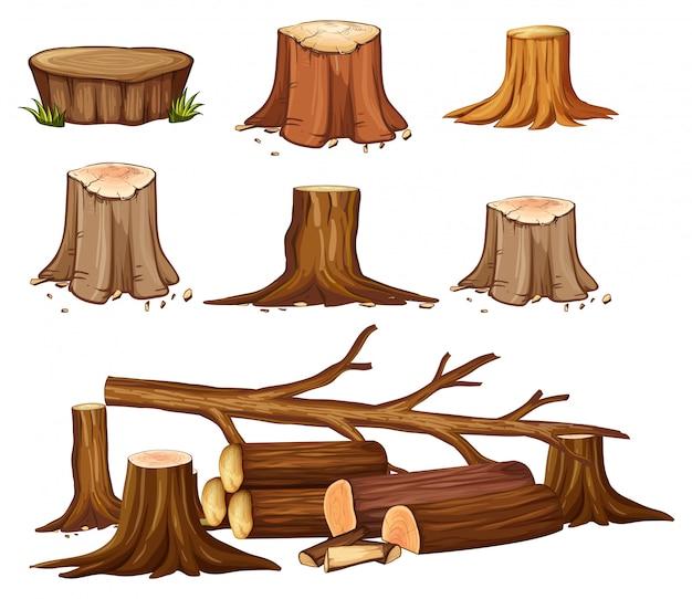 A set of deforestation