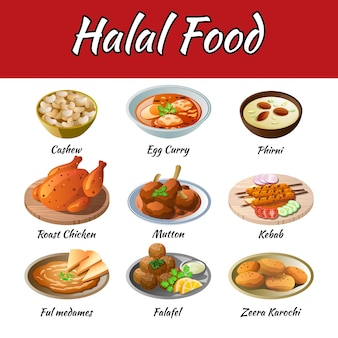 Set of delicious and famous food of halal in colorful