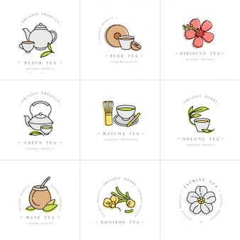 Set design colorful templates logo and emblems - organic herbs and teas . different teas icon. logos in trendy linear style isolated on white background.