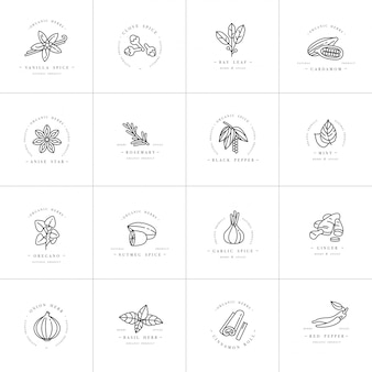 Set design templates monochrome logo and emblems - herbs and spices. different spices icon. logos in trendy linear style isolated on white background.