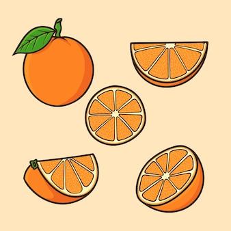 오렌지 과일 만화 벡터 절연의 다른 각도를 설정