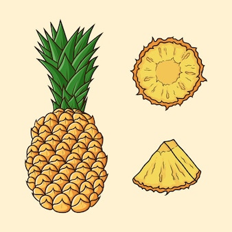 Set different angles of pineapple fruit cartoon vector isolated