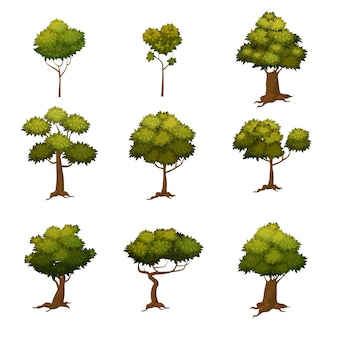 Set of different cartoon style trees, vector illustration