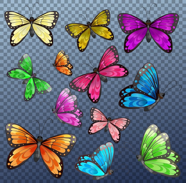 Set of different color butterfly on transparent