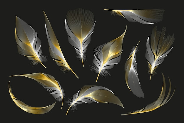 Set of different falling fluffy twirled feathers on a white background