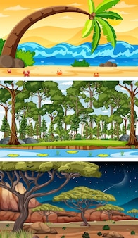 Set of different forest horizontal scenes in different times