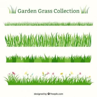 Set of different garden grass
