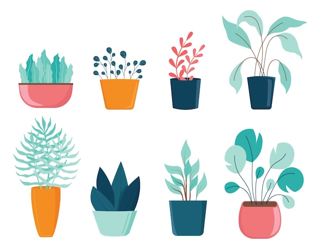 Set of different house plants with green leaves in pots. tropical flowers and cactuses for room decoration.