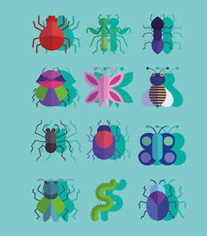 Set of different insects or bugs small animals with shadow style illustration